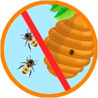 picaduras de insectos temporada de verano